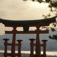 広島県でスピリチュアル鑑定をするならどこ?人気占い師3選