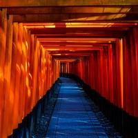和歌山で当たる透視占いができる!人気の占い師まとめ