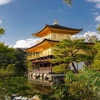 京都府で当たる透視占いができる!人気の占い師まとめ