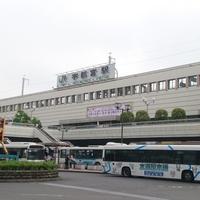 宇都宮でタロット占いがしたい!栃木で人気の当たる占い師まとめ