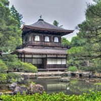 京都でタロット占いがしたい!当たる人気占い師まとめ