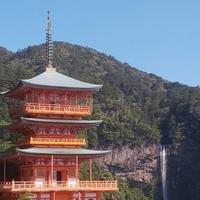 タロット占いもOK!和歌山県で人気&おすすめの先生5選