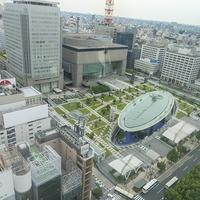 名古屋で夢占いをするなら!おすすめスポットと占い師