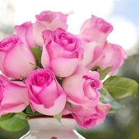ルノルマンカード占い「花束」の意味とは?組み合わせについて
